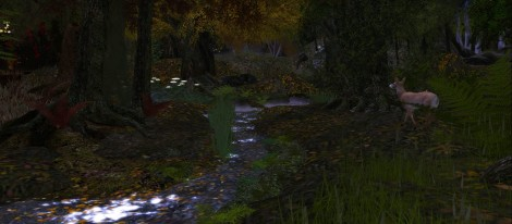 hidden stream.jpg
